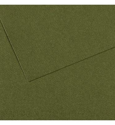 Papel Mi-Teintes Canson 448 Verde Mar 50x65cm