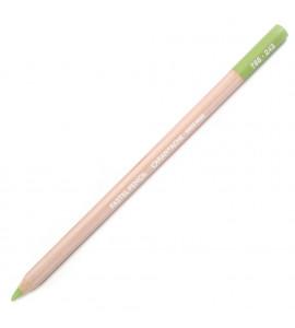 Lápis Pastel Seco Caran D'Ache Light Olive 20% 243