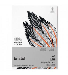 Bloco Bristol Winsor e Newton A5 250g 20 Folhas