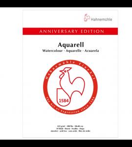 Papel Para Aquarela Edição Aniversário Hahnemühle 30x40cm 50 Folhas