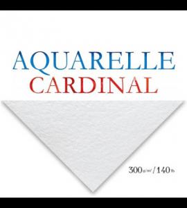 Papel Para Aquarela Cardinal Branco 50x65cm 300g/m²