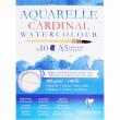 Bloco de Papel Para Aquarela Cardinal A5 300g