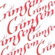 Tinta Para Caligrafia Winsor & Newton Crimson