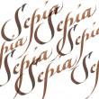 Tinta Para Caligráfica Winsor & Newton Sepia